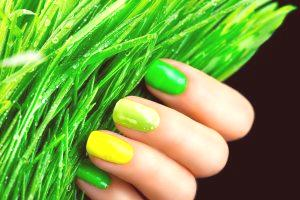 Shellac Nails: Top Best Designs